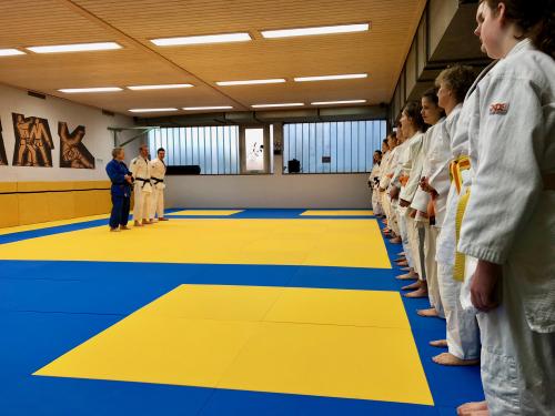 Offener DJB Kata-Lehrgang Nage no kata und Kodokan Goshin jutsu @ DJK Aschaffenburg | Aschaffenburg | Bayern | Deutschland